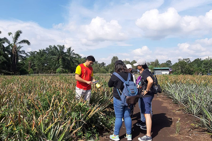 Outdoor Interview and Report Experience in Pekan Nenas, Johor